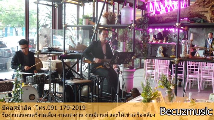 วงดนตรีงานแต่ง_งานแต่งที่ร้าน Vivarium By Chefs Ministry (วิวาเรียม) 001