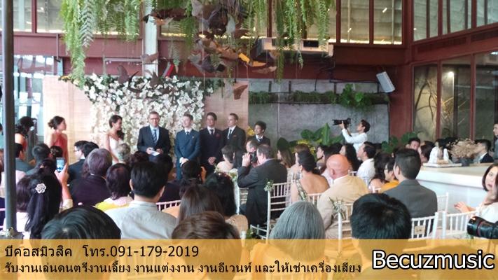 วงดนตรีงานแต่ง_งานแต่งที่ร้าน Vivarium By Chefs Ministry (วิวาเรียม) 002