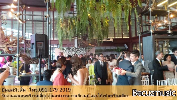 วงดนตรีงานแต่ง_งานแต่งที่ร้าน Vivarium By Chefs Ministry (วิวาเรียม) 003
