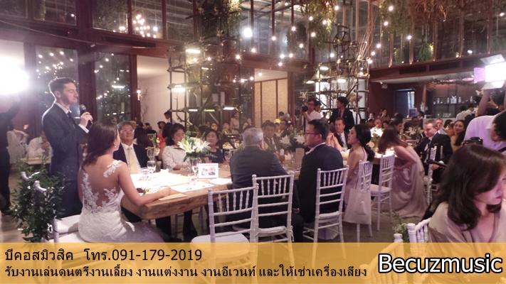 วงดนตรีงานแต่ง_งานแต่งที่ร้าน Vivarium By Chefs Ministry (วิวาเรียม) 005